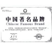 中国著名品牌09年