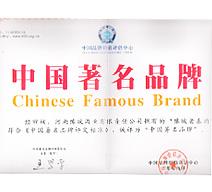 08年中国著名品牌